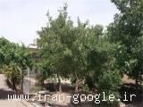 فروش خانه حیاط دار مناسب ساخت وساز